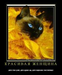 Наталья Коконова, 12 мая 1992, Красноярск, id36924922